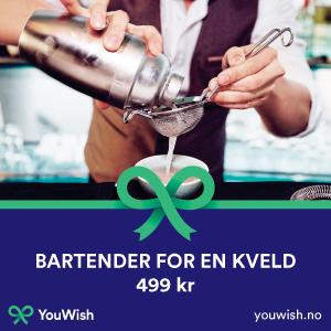 Gavetips: V�r bartender for en kveld - Oslo